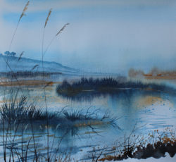 Winter On The Marsh